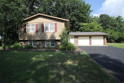 Photo of 703 Huntley Court, Troy, IL 62294 (MLS # 18044179)
