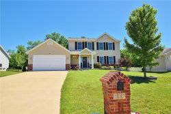 Photo of 237 Whitetail Crossing Drive, Troy, MO 63379-2564 (MLS # 18045624)