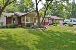 Photo of 12214 Belaire Place, Maryland Heights, MO 63043-1104 (MLS # 18046649)