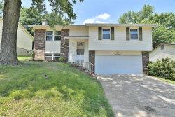 Photo of 1387 Mckelvey Road, Maryland Heights, MO 63043-2849 (MLS # 18047679)