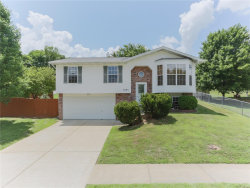 Photo of 5005 Owls Nest Drive, Imperial, MO 63052-4404 (MLS # 18049145)