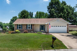 Photo of 3 Divot Court, St Peters, MO 63376-4656 (MLS # 18049958)