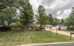 Photo of 826 Mary Meadows Lane, Creve Coeur, MO 63141 (MLS # 18049992)