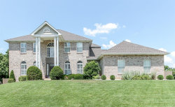 Photo of 653 Clifden Drive, Weldon Spring, MO 63304-0509 (MLS # 18050097)