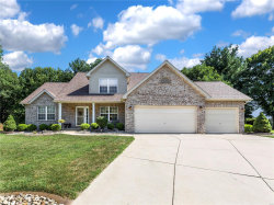 Photo of 164 Oaklawn Drive, Glen Carbon, IL 62034 (MLS # 18053618)
