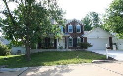 Photo of 3798 Falcon View Drive, Arnold, MO 63010-4554 (MLS # 18055614)