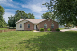 Photo of 1177 Tampico Drive, Edwardsville, IL 62025 (MLS # 18057021)