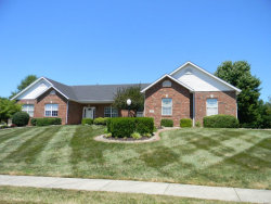 Photo of 133 Oakland Drive, Troy, IL 62294 (MLS # 18059146)