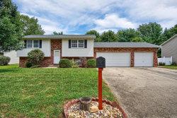 Photo of 22 Cottonwood Glen Drive, Glen Carbon, IL 62034 (MLS # 18067600)