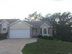 Photo of 201 Meadowview, Warrenton, MO 63383-1988 (MLS # 18068993)