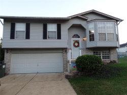 Photo of 3106 5 Oaks, Arnold, MO 63010-3881 (MLS # 18071715)