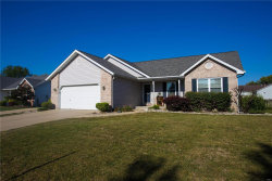 Photo of 9 Meadowbrooke Drive, Troy, IL 62294-2456 (MLS # 18071999)
