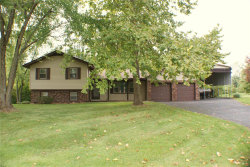 Photo of 1319 Bridlespur, Troy, IL 62294 (MLS # 18076404)
