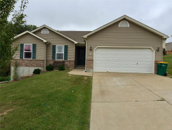 Photo of 911 Foster Court, Pevely, MO 63070-2999 (MLS # 18076729)