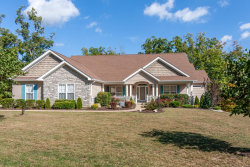 Photo of 31 Kniess Court, Troy, MO 63379 (MLS # 18079728)