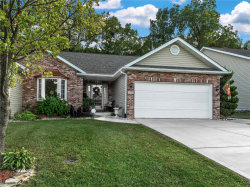 Photo of 1034 Notting Hill Ct, Collinsville, IL 62234-6048 (MLS # 18079908)