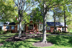 Photo of 1034 Cabernet Drive, Town and Country, MO 63017-8307 (MLS # 18080582)