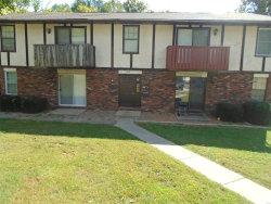 Photo of 1003 Cherokee Street, Collinsville, IL 62232 (MLS # 18080755)