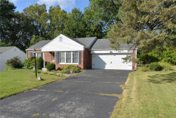 Photo of 1433 Lanvale Drive, Webster Groves, MO 63119 (MLS # 18081574)