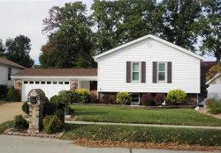 Photo of 4747 Bramble Berry, St Louis, MO 63129-1740 (MLS # 18083370)