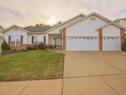 Photo of 5012 Annette, Imperial, MO 63052-4022 (MLS # 18084276)