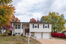 Photo of 2638 Alice Drive, Arnold, MO 63010 (MLS # 18088102)