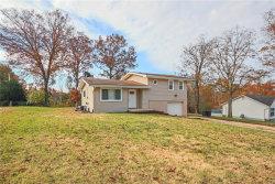 Photo of 4650 Granada Drive, Hillsboro, MO 63050-1938 (MLS # 18088861)
