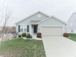 Photo of 6596 Buckingham Palace Drive, Imperial, MO 63052-3811 (MLS # 18089376)