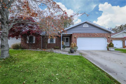 Photo of 100 Sunset Drive, Highland, IL 62249 (MLS # 18089682)