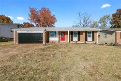 Photo of 1511 Saint Ives Drive, St Louis, MO 63136-2319 (MLS # 18090039)