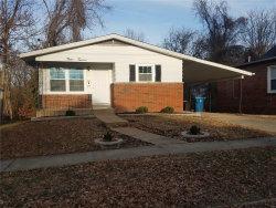 Photo of 912 Klein Avenue, Edwardsville, IL 62025-1145 (MLS # 18091614)