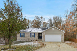 Photo of 340 Essex Court, Troy, MO 63379-5492 (MLS # 18091900)