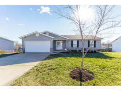 Photo of 28 Silver Court, Troy, MO 63379-2820 (MLS # 18092080)