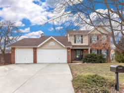 Photo of 2717 Stone Valley Drive, Maryville, IL 62062 (MLS # 18092437)