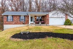 Photo of 1071 Eagle Valley Drive, Festus, MO 63028 (MLS # 18092567)