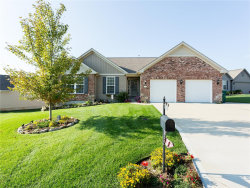 Photo of 212 Dover Castle Court, Imperial, MO 63052-2019 (MLS # 18092721)