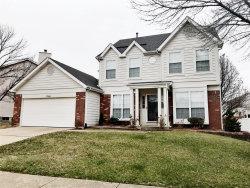 Photo of 11346 Brierhall Circle, Maryland Heights, MO 63043-5001 (MLS # 18093267)