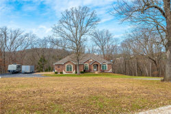Photo of 303 Long View, Festus, MO 63028-6106 (MLS # 18093845)