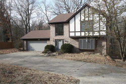 Photo of 13 Oakside Drive, Collinsville, IL 62234-6302 (MLS # 18093933)