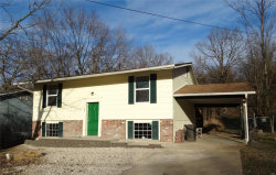 Photo of 28 Holly Lane, Festus, MO 63028-1043 (MLS # 18094066)
