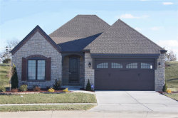 Photo of 14730 Schoettler Grove Court, Chesterfield, MO 63017-7972 (MLS # 18094284)