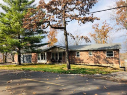Photo of 77 East Lake, Fenton, MO 63026-5010 (MLS # 18094596)