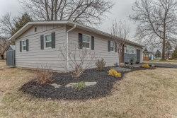 Photo of 303 Nepute Street, Maryville, IL 62062-6628 (MLS # 19000875)