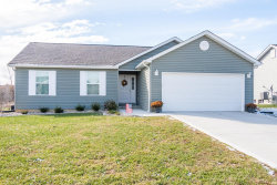Photo of 212 Tbb Bayview Drive, Troy, MO 63379 (MLS # 19001517)