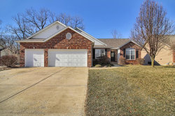 Photo of 248 Harbor Mill Drive, Troy, IL 62294-3239 (MLS # 19003546)