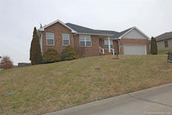Photo of 1420 Holly Drive, Cape Girardeau, MO 63701-2170 (MLS # 19003652)