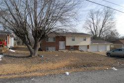 Photo of 2416 Shady Drive, Arnold, MO 63010-2357 (MLS # 19003753)