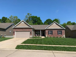 Photo of 5349 Amber Meadows Drive, Imperial, MO 63052-3110 (MLS # 19004286)