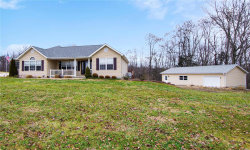Photo of 906 Autumn Knoll Place, Festus, MO 63028 (MLS # 19004503)