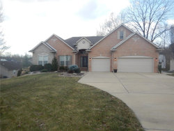 Photo of 5 Timber Stone Court, Glen Carbon, IL 62034 (MLS # 19005289)